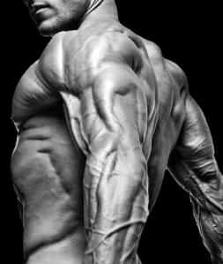 integrazione_definizione_muscolare